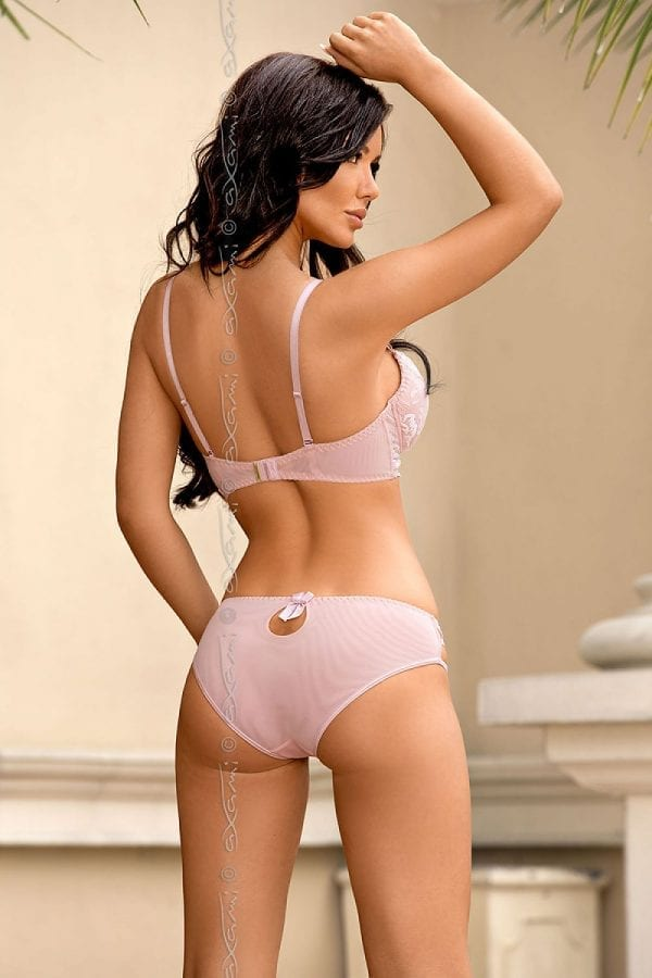 Bra and panty pink